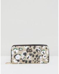 Nica - Printed Zip Around Wallet - Lyst