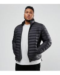 Schott Nyc - Plus Oakland Down Puffer Jacket Slim Fit In Black - Lyst