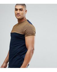 ASOS - Tall T-shirt With Contrast Yoke And Roll Sleeve In Twisted Jersey - Lyst
