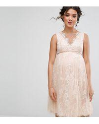 Chi Chi London - Floral Lace Applique Midi Dress - Lyst