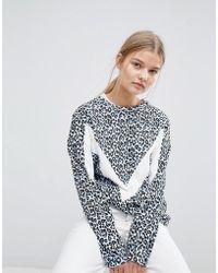 MAX&Co. - Max&co Sweat Top In Leopard Print - Lyst