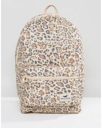 Hollister   Core Canvas Backpack   Lyst