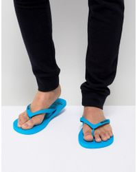 Hollister - Solid Rubber Logo Flip Flop In Blue - Lyst