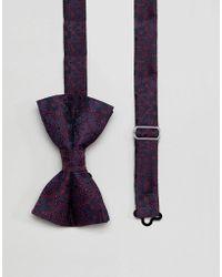 ASOS - Design Paisley Bow Tie In Navy - Lyst