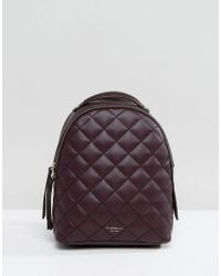 Fiorelli | Mini Anouk Quilted Backpack In Aubergine | Lyst