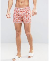 Mango - Man Swim Shorts In Pink Starfish Print - Lyst