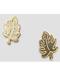 ASOS - Design Gold Plated Sterling Silver Palm Leaf Stud Earrings - Lyst