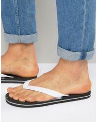 Animal - Costaz Flip Flops - Lyst