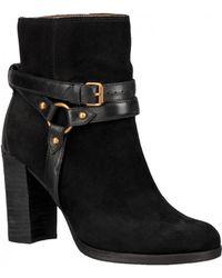 UGG - Ladies Dandridge High Buckle Boot - Lyst