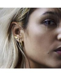Anna + Nina - Silver Fish Hoop Earrings - Lyst