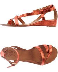 Ash Gold Thong Sandal - Lyst