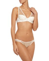 Mimi Holliday by Damaris - Low-rise Embroidered Mesh And Silk-chiffon Briefs - Lyst