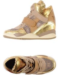 Ash Gold High-tops  Trainers - Lyst