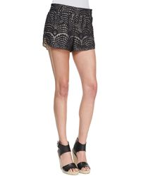 Twelfth Street by Cynthia Vincent Laceoverlay Gym Shorts - Lyst