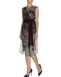 Escada Floral Dabluma Dress - Lyst