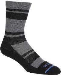 Fits - Light Striped Hiker Crew Socks - Lyst