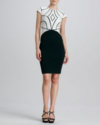 Catherine Deane Ricci Twotone Leatherbodice Cocktail Dress - Lyst