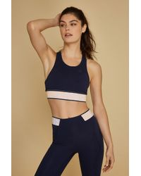 dbc9af8e16194 Lyst - LNDR Wildcat Sports Bra in Blue