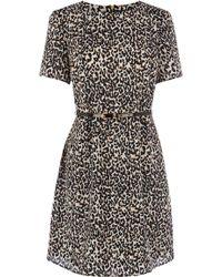 Oasis Animal Shift Dress - Lyst