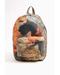 Nasty Gal Purrfect Backpack - Lyst