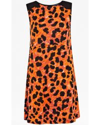 French Connection Leo Leopard Flared Dress animal - Lyst