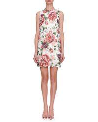 Dolce & Gabbana - Sleeveless Rose-printed Lace A-line Dress - Lyst