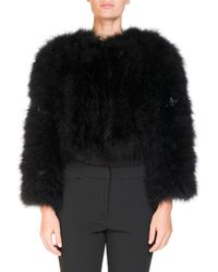 Erdem - Ivett Cropped Feather-embellished Jacket - Lyst