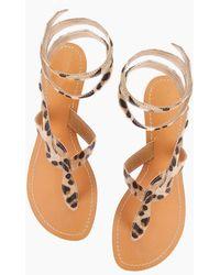 Aspiga - Cobra Sandals - Leopard - Lyst