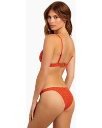 Tigerlily - Chandrani Havana Bikini Bottom - Terracotta Eyelet - Lyst