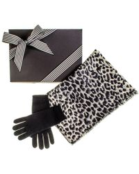 Black.co.uk - Leopard Print Scarf And Black Cashmere Gloves Gift Set - Lyst