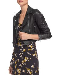 Whistles - Rose Cropped Leather Jacket - Lyst