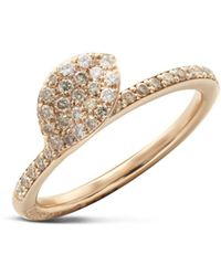 Pasquale Bruni - 18k Rose Gold Secret Garden Single Petal Pavé Diamond Ring - Lyst