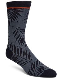 Cole Haan - Palm Leaves Socks - Lyst
