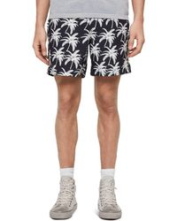 AllSaints - Santa Cruz Palm Tree Print Swim Shorts - Lyst