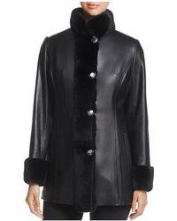 Maximilian - Rex Rabbit Fur-collar Leather Jacket - Lyst