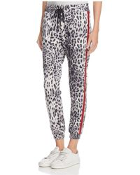 Honey Punch - Leopard Print Tuxedo Stripe Jogger Pants - Lyst