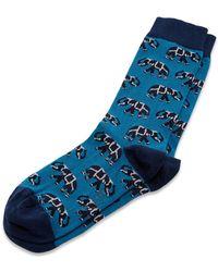 Ted Baker | Markfro Elephant Socks | Lyst
