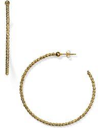 Officina Bernardi - Beaded Hoop Earrings - Lyst