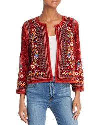 Velvet By Graham & Spencer - Nita Floral-embroidered Velvet Cropped Jacket - Lyst