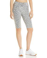 Chaser - Leopard Print Bike Shorts - Lyst