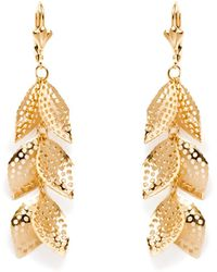 Peermont - Gold Circle Cutout Leaf Drop Earrings - Lyst