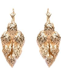 Peermont - Gold Leaf Earrings - Lyst