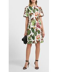Oscar de la Renta | Jungle Print Cotton-blend Midi Dress | Lyst