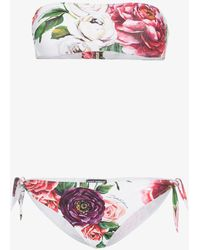 Dolce & Gabbana - Peony Print Bandeau Bikini - Lyst