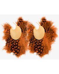 Katerina Makriyianni - Feather Hoop Earrings - Lyst