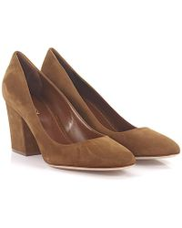 Sergio Rossi - Court Shoes Goatskin Suede Brown - Lyst