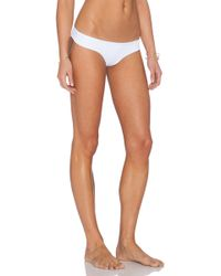 Salt Swimwear   Freya Bikini Bottoms   Lyst