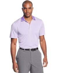 Cutter & Buck - Big And Tall Drytec Striped Trevor Polo - Lyst