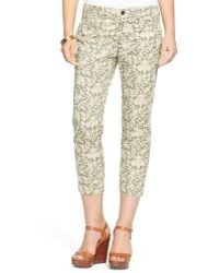 Ralph Lauren Leaf-Print Cotton Twill Pant green - Lyst