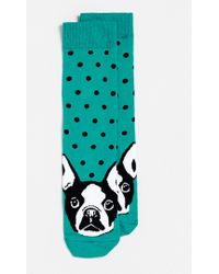 Topman Teal French Bulldog Socks - Lyst